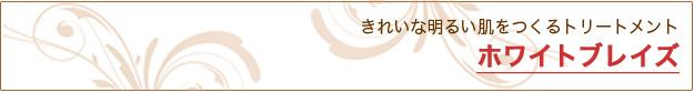 ホワイトブレイズ フェイシャル(美顔)|米沢市エステティックサロン ビークラッセ(b-classe)