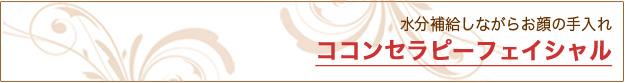 ココンセラピーフェイシャル フェイシャル(美顔)|米沢市エステティックサロン ビークラッセ(b-classe)